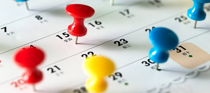 Thumbtack pins stuck to a calendar marking a business consultant's tasks