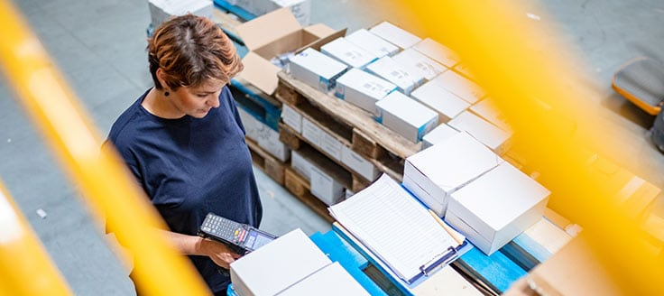 UPS, FedEx and USPS offer international shipping services.