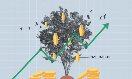 "Image of a tree with coins and a gree line graph trending up with the word ""investments"""